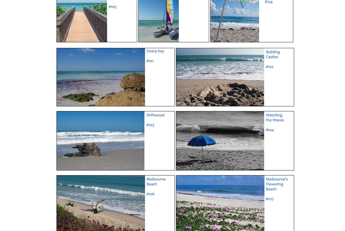 Toes in the Sand Photography Website Design and Coding